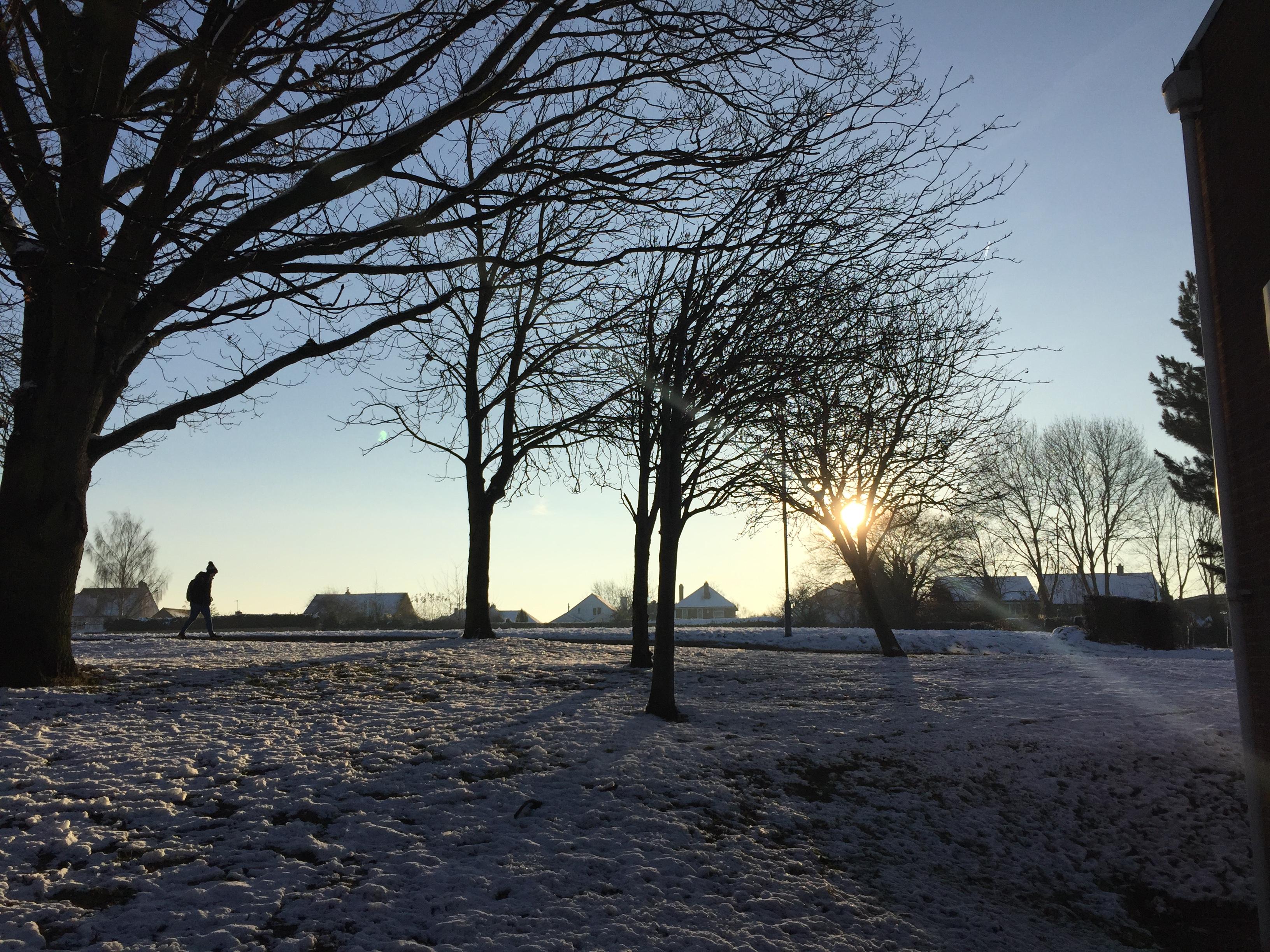 【英國 - 拉夫堡大學 】Photo was shot in winner 2017 in Loughborough University, United Kingdom. The winter in Loughborogh was covered in white. The photo was the view outside of my hall. The snow was sparkling like a million little suns. I saw the beautiful views when waking around the campus or just looking out from my window. I have experienced the beauty of nature of four seasons within the campus. Loughborough's beautiful campus was comfy and releasing which made me be in a good mood for learning every day.                                                             (UA4A 黃鈺雯)
